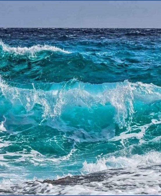 El reto de tener una cultura oceánica para proteger a nuestro mar